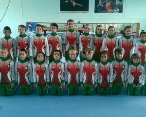 Международен турнир по спортна гимнастика