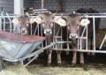 Искаме от ЕС помощ за млекарите ни заради санкциите на Русия