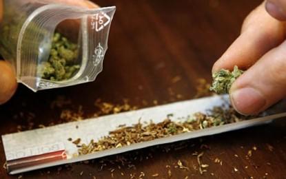 Канабис: Защо легализацията не е решението?