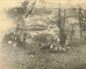 22 април: Преди 100 г. Яне Сандански е убит от засада край Мелник