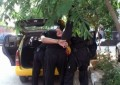 Акция в Сандански: Полиция спря и обискира един от най-крупните наркодилъри