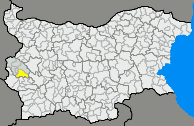 община радомир